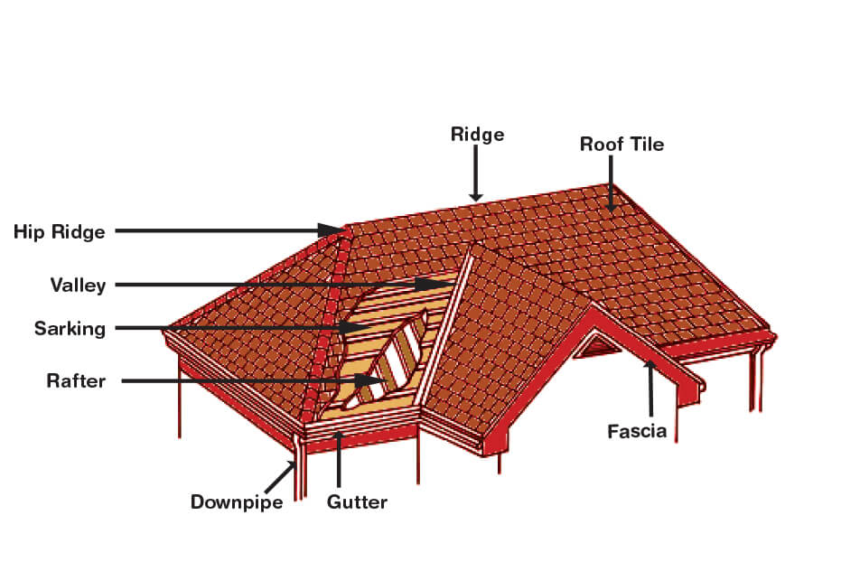 Understanding Your Roof Structure Able Roof Restoration